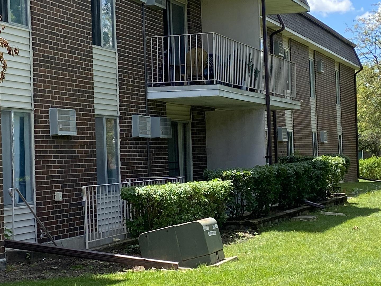 1133 Miller 106, Buffalo Grove, Illinois, 60089