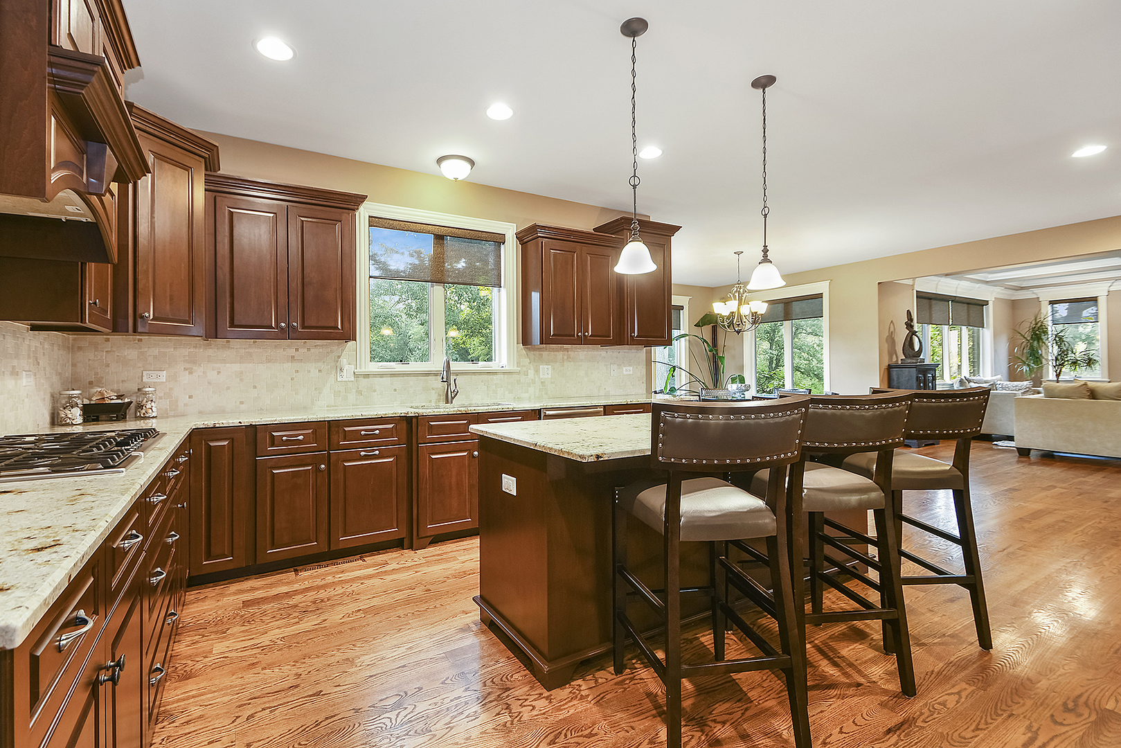 14334 Fawn View, ORLAND PARK, Illinois, 60467
