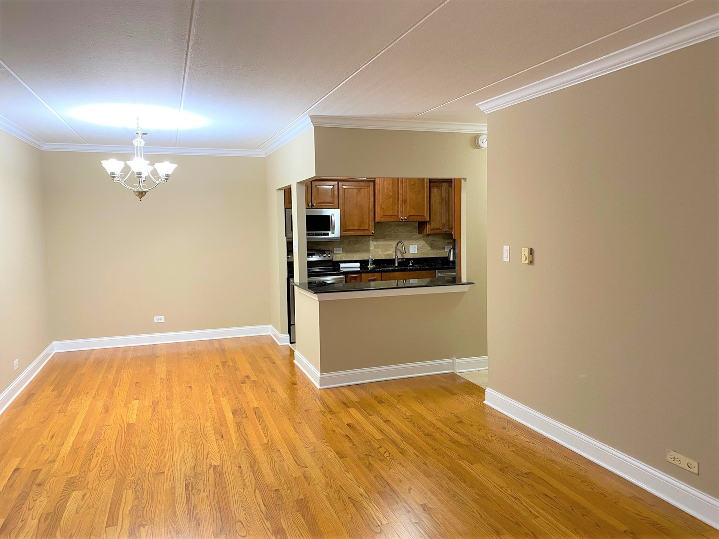 919 North Boxwood 406, Mount Prospect, Illinois, 60056
