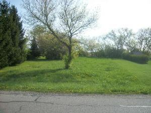 Property for sale at 0 West North Street, Essex,  IL 60935
