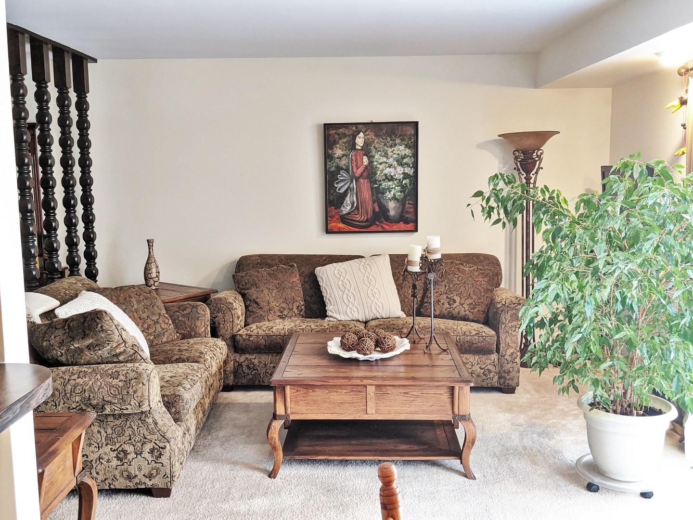 11 Cour Monnet, Palos Hills, Illinois, 60465