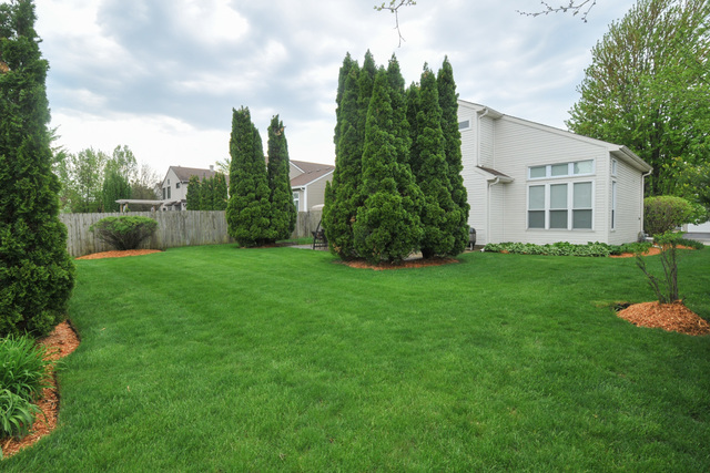 875 Tallgrass, BARTLETT, Illinois, 60103