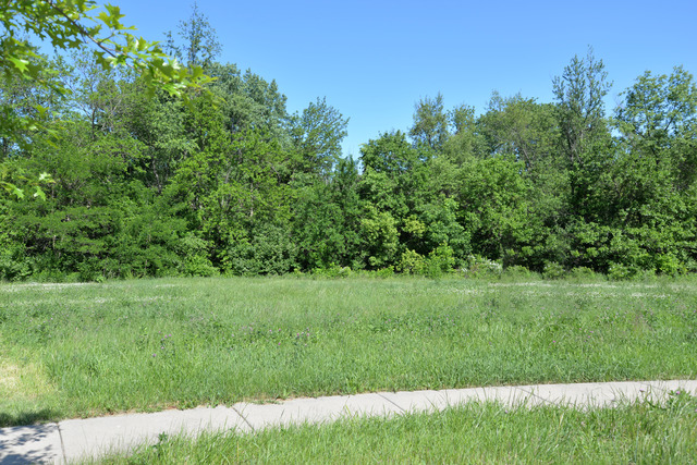 Property for sale at 00 Wooded Cove Drive, Elwood,  IL 60421