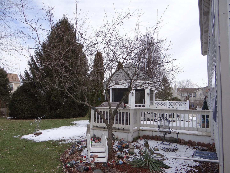 137 Cinderford, Oswego, Illinois, 60543