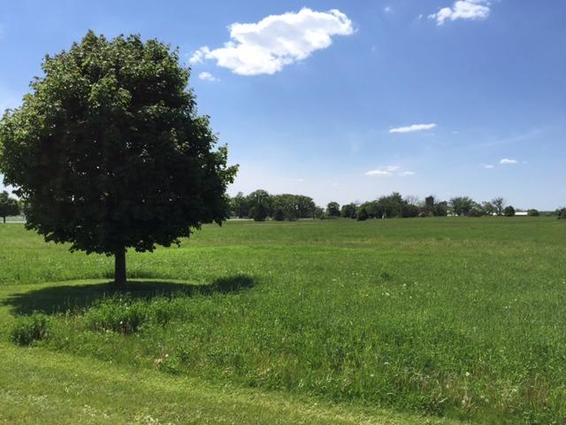 8709 Prairiefield Drive, Union, IL 60180