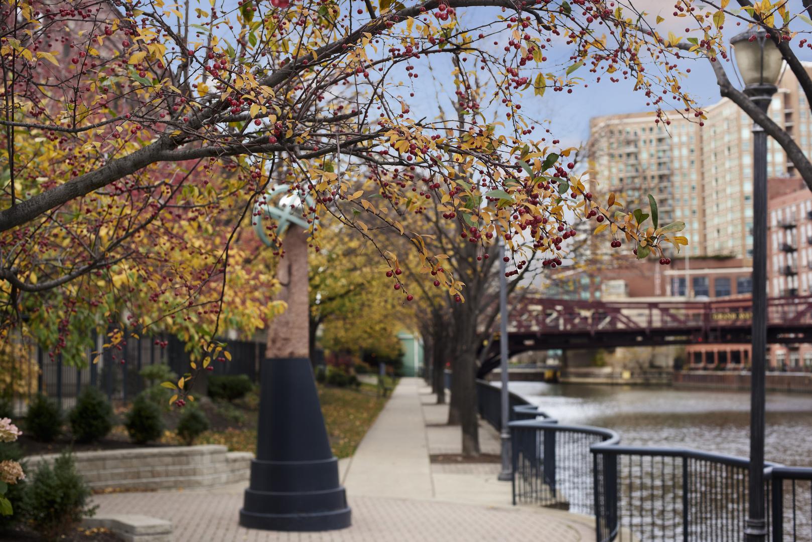 501 North Clinton 2005, CHICAGO, Illinois, 60654