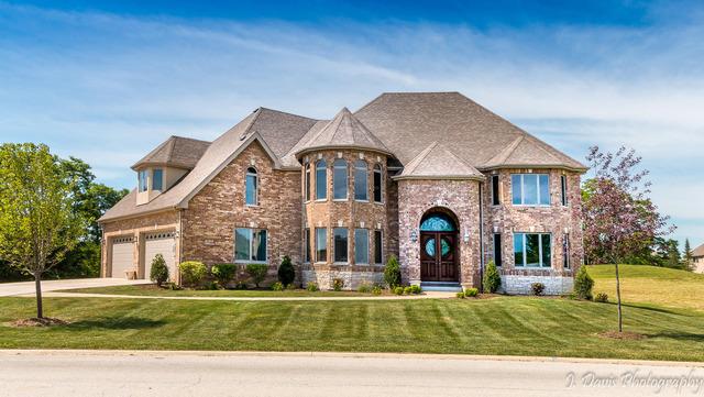 7739 West Santa Lucia, Monee, Illinois, 60449