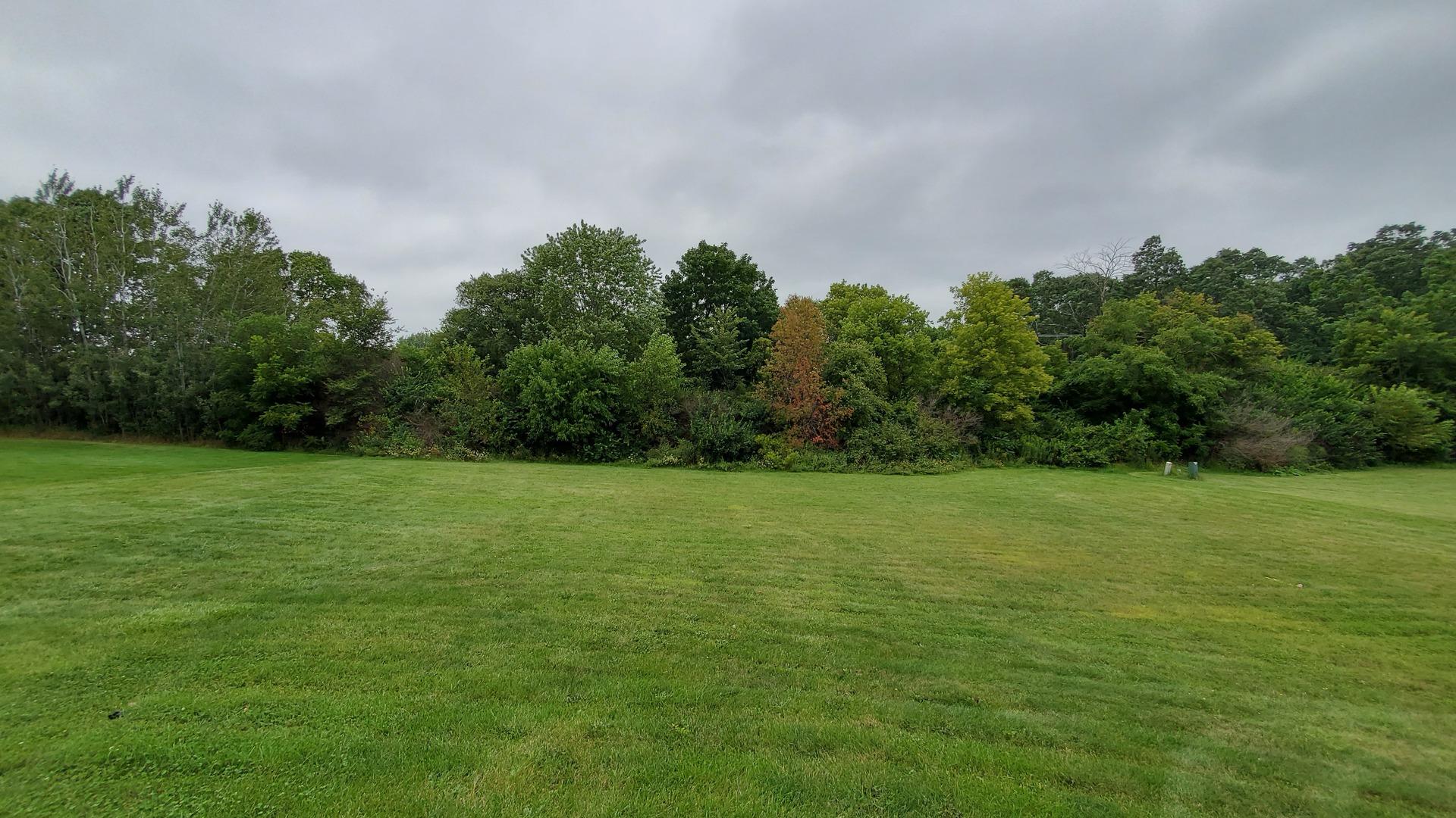 12938 Arboretum, Belvidere, Illinois, 61008