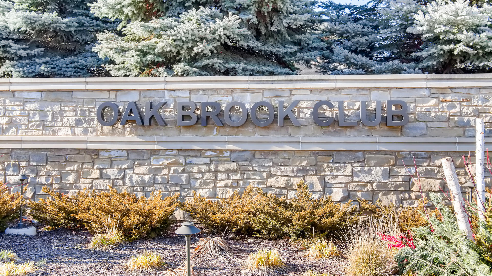 1 Oak Brook Club A308, Oak Brook, Illinois, 60523