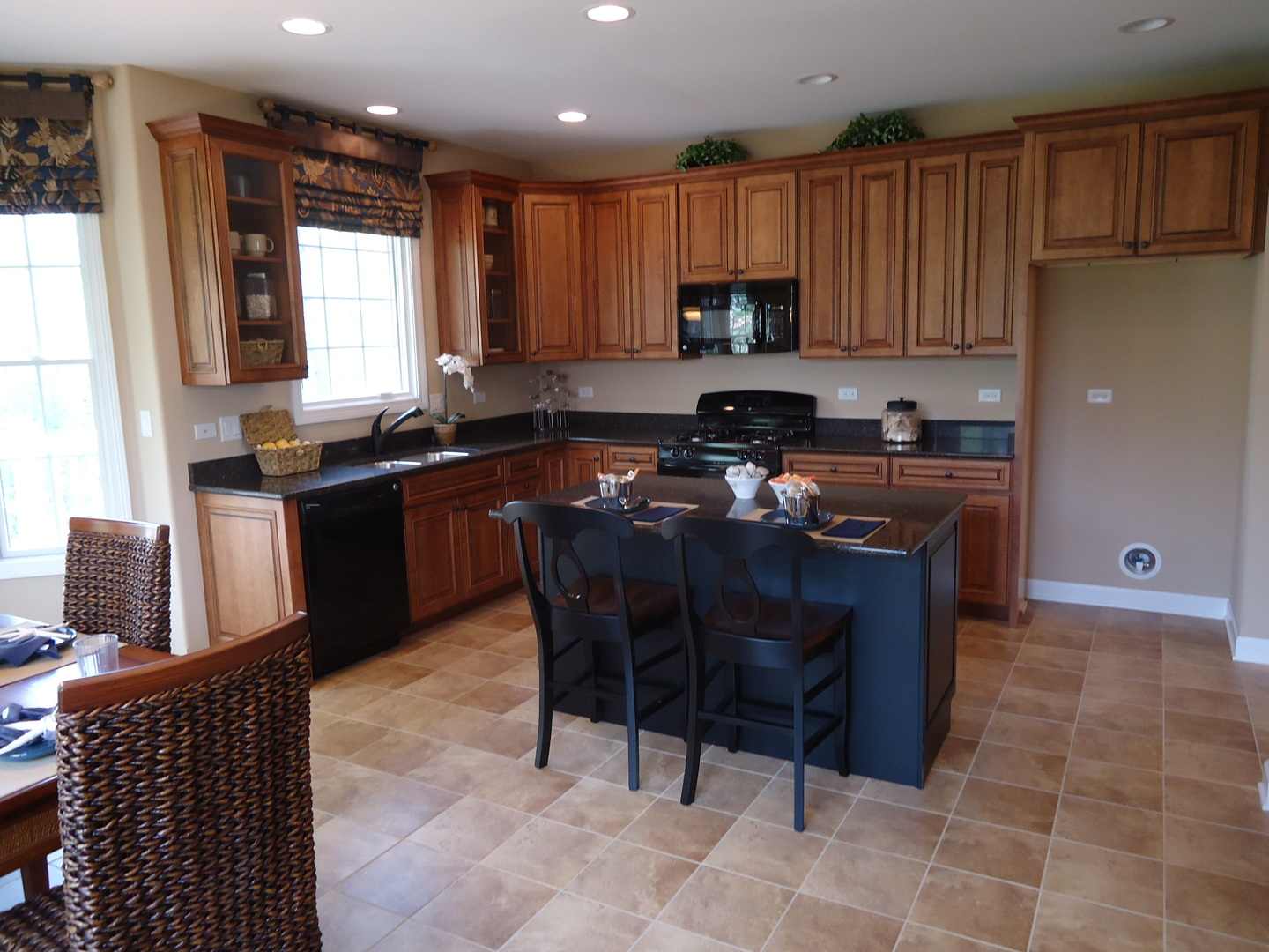 921 Woodglen Lane Lemont, IL 60439 - MLS #: 09772271