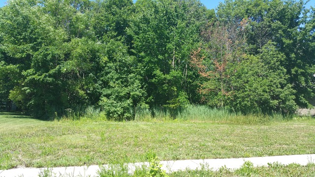 Property for sale at 26564 South Kimberly Lane, Channahon,  IL 60410