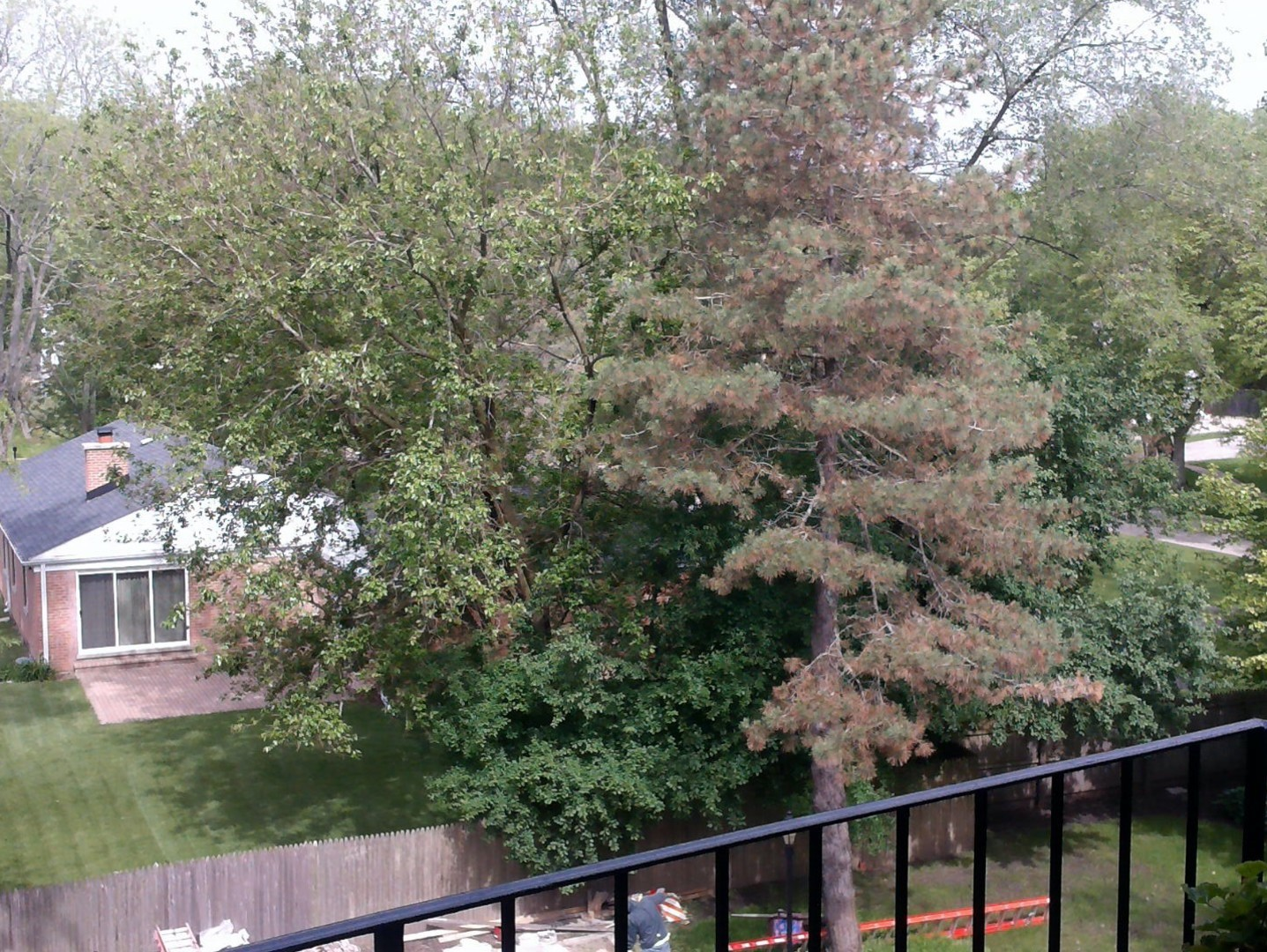 1350 North Western 308, Lake Forest, Illinois, 60045