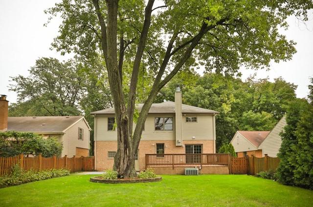 114 North Emerson, Mount Prospect, Illinois, 60056