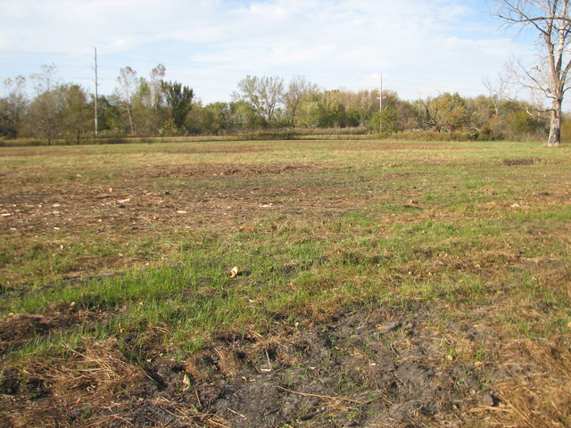 Property for sale at 465 South State Route 53, Braceville,  IL 60407