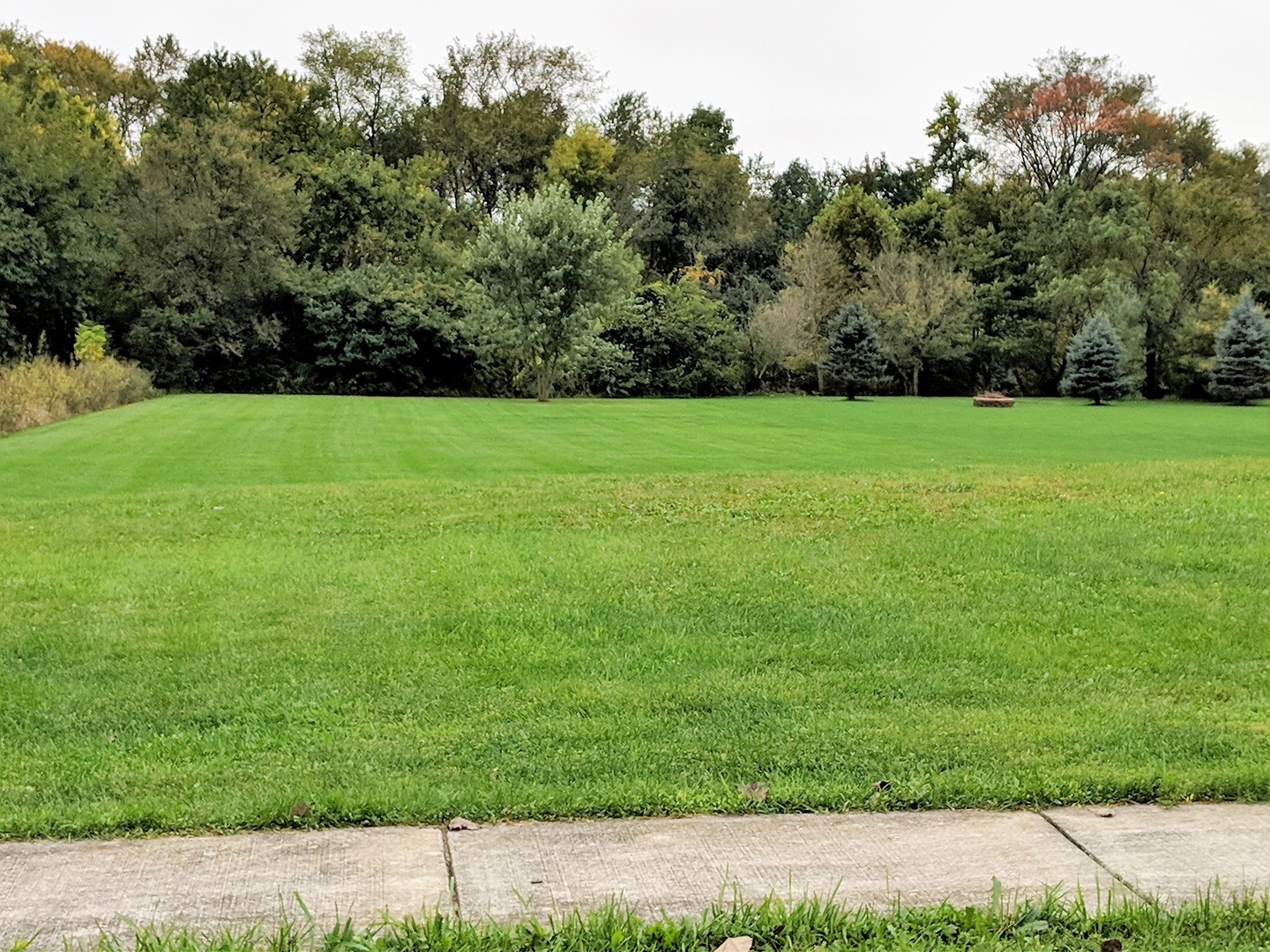 Property for sale at 21151 Wooded Cove Drive, Elwood,  IL 60421