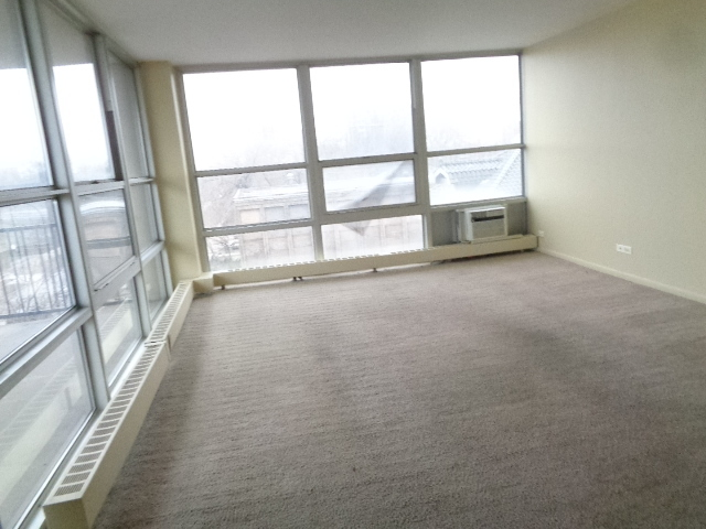 6730 South SOUTH SHORE 403, CHICAGO, Illinois, 60649