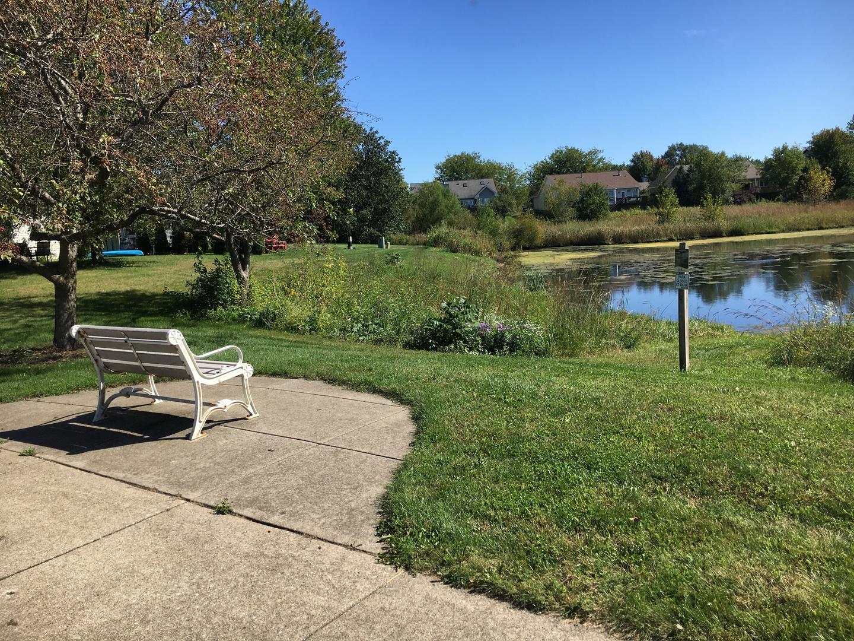 411 Prairieview, Oswego, Illinois, 60543