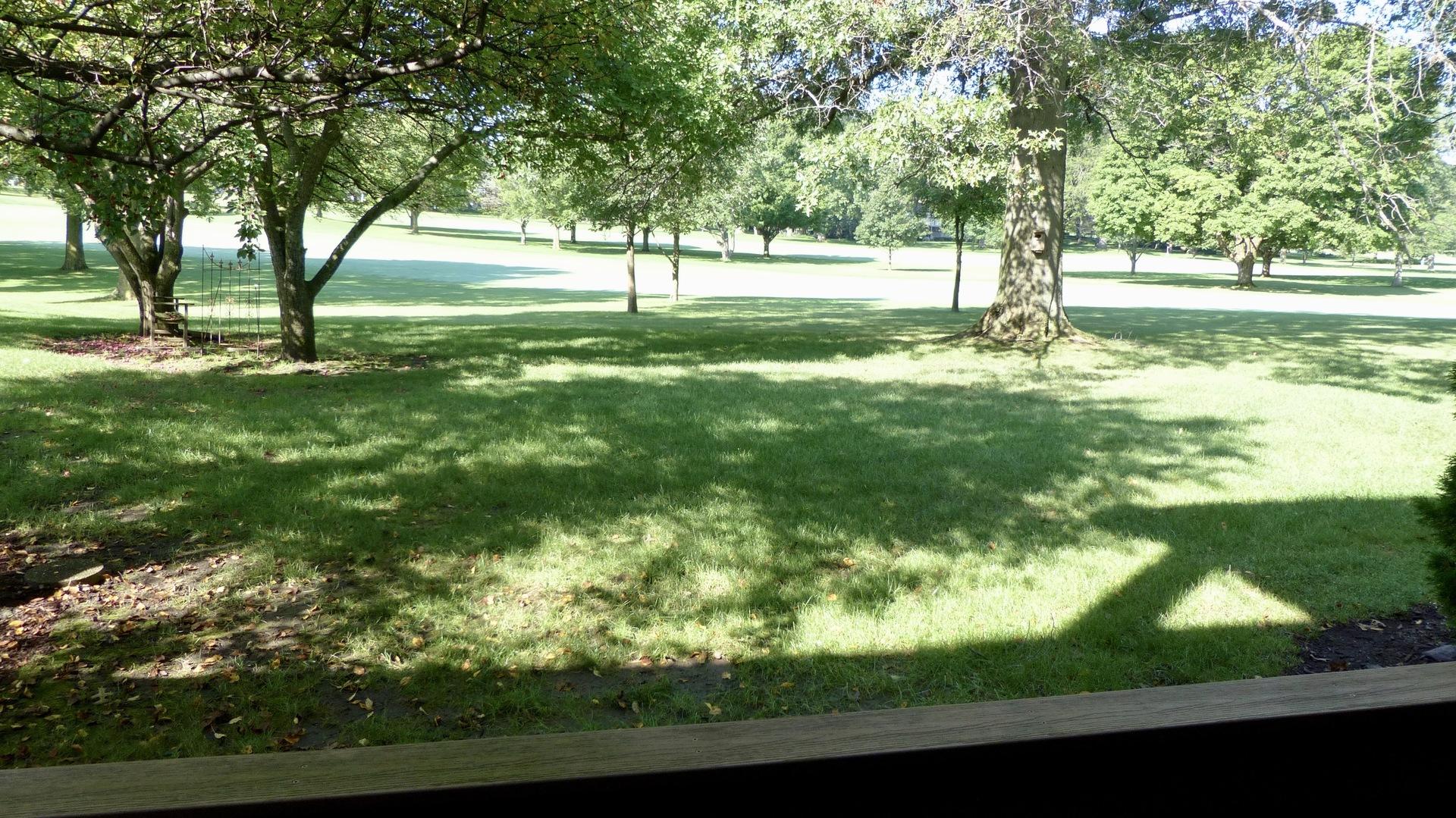 70 Golf View B, Frankfort, Illinois, 60423