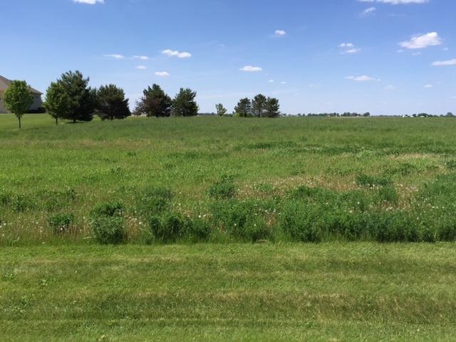 17402 Wildflower Circle, Union, IL 60180
