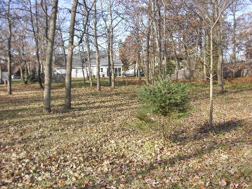 Lot 1 Park Drive, Waterford, WI 53185