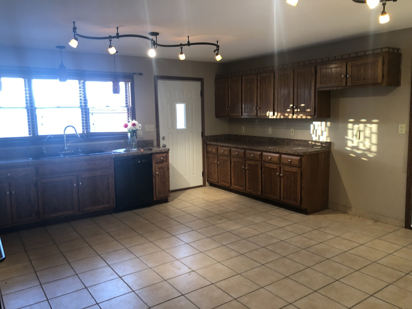 26616 South Mckinley Woods, Channahon, Illinois, 60410