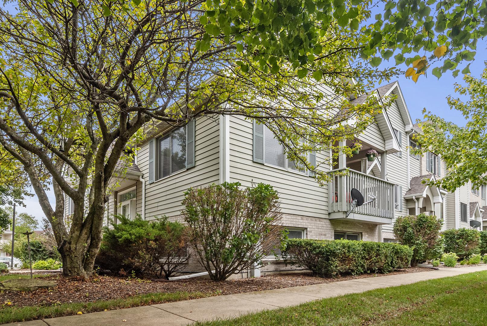 401 East Willow, ELBURN, Illinois, 60119
