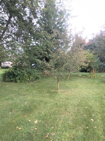 208 Pembroke, Poplar Grove, Illinois, 61065