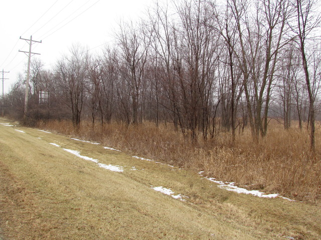 Property for sale at 225 North Hickory Street, Braidwood,  IL 60408
