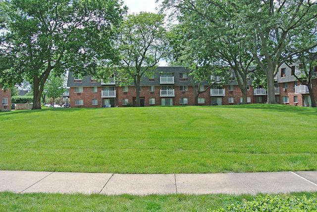 920 RIDGE 113, ELK GROVE VILLAGE, Illinois, 60007
