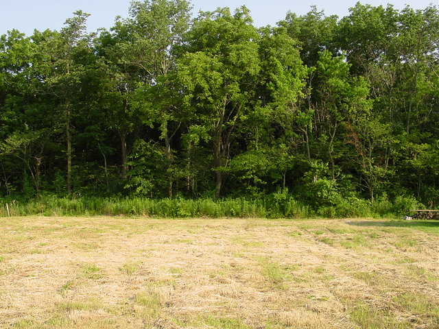 Property for sale at 10126 Pockey Way, Elwood,  IL 60421