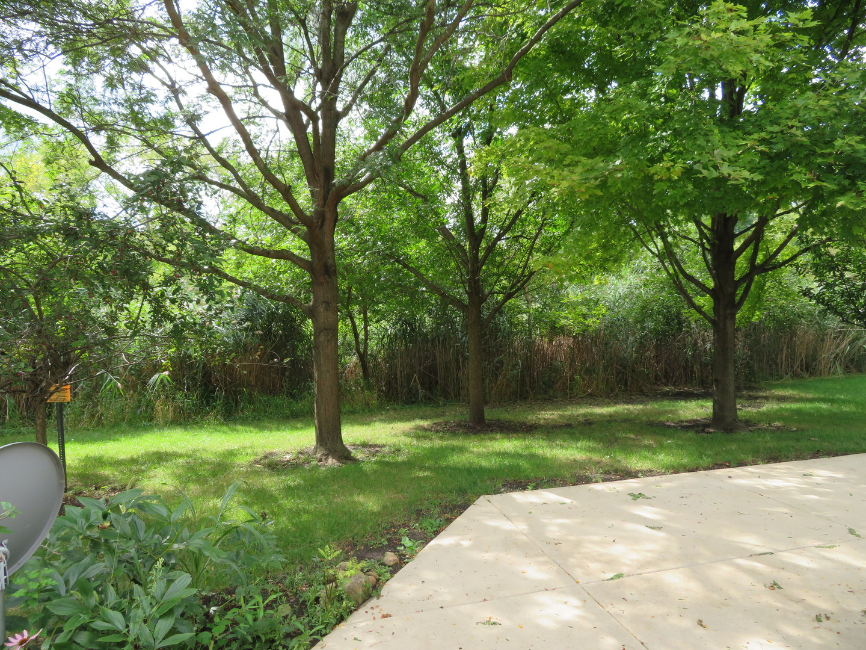 3032 Covered Bridge Way, Joliet, Illinois, 60435