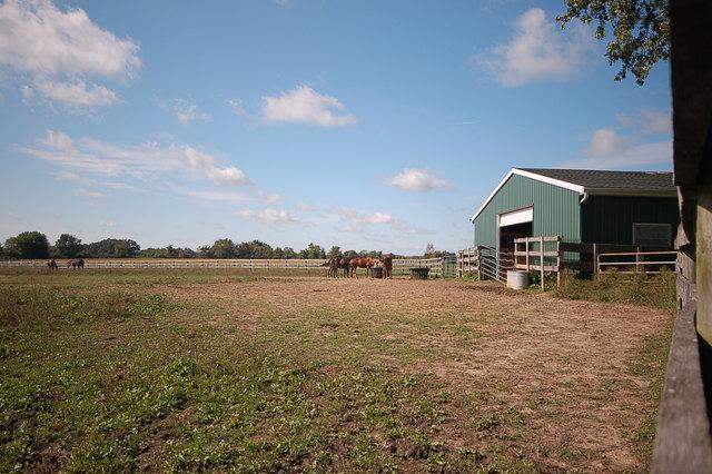 10813 Spring, Garden Prairie, Illinois, 61038