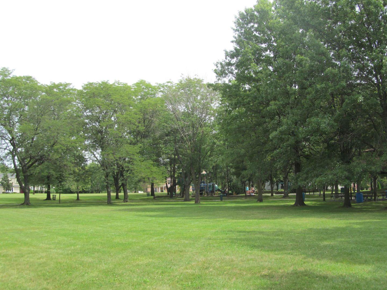 3514 ITHACA, Olympia Fields, Illinois, 60461