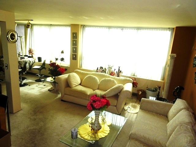 1700 East 56th 3109, CHICAGO, Illinois, 60637
