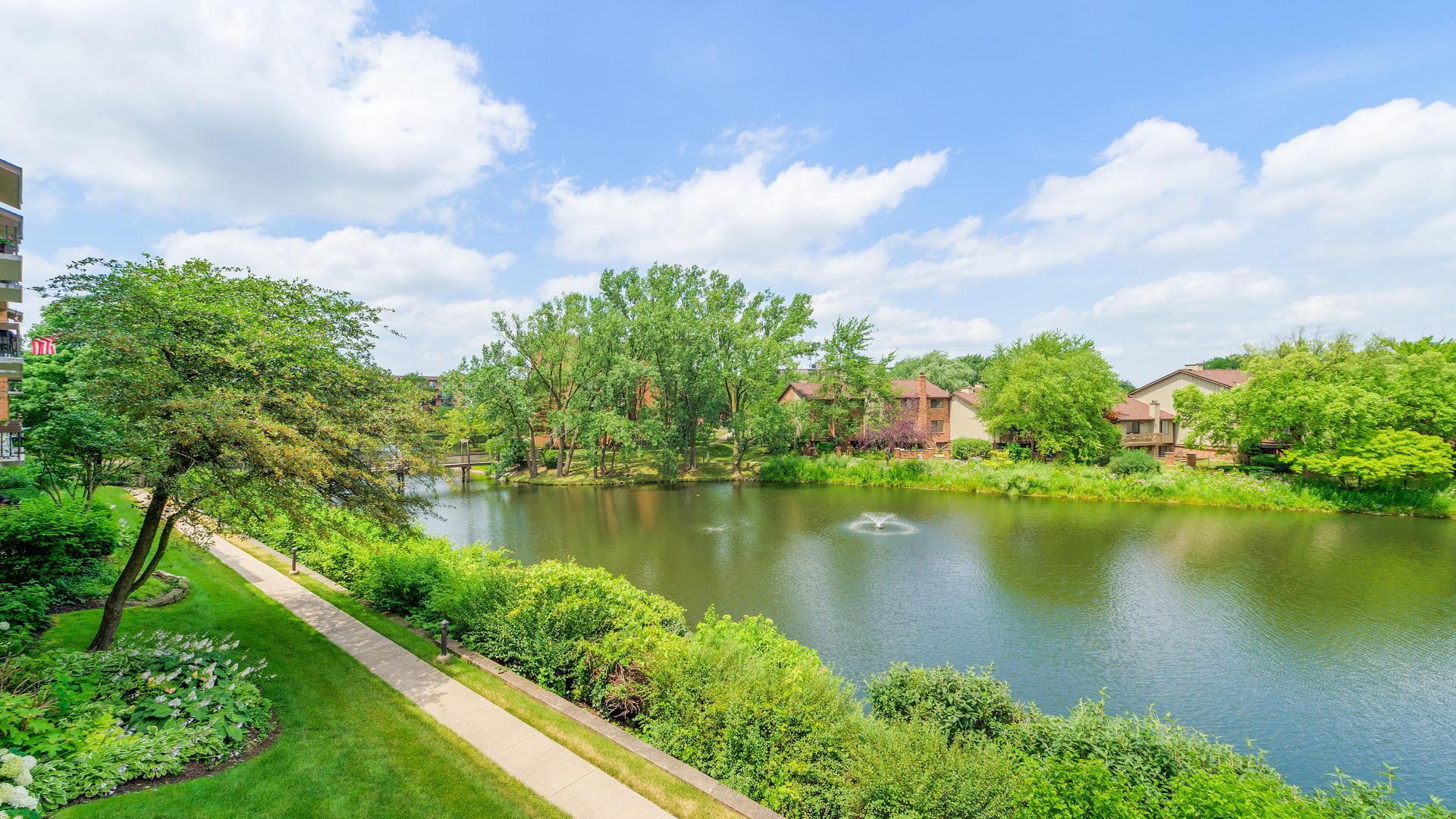 201 Lake Hinsdale 203, WILLOWBROOK, Illinois, 60527
