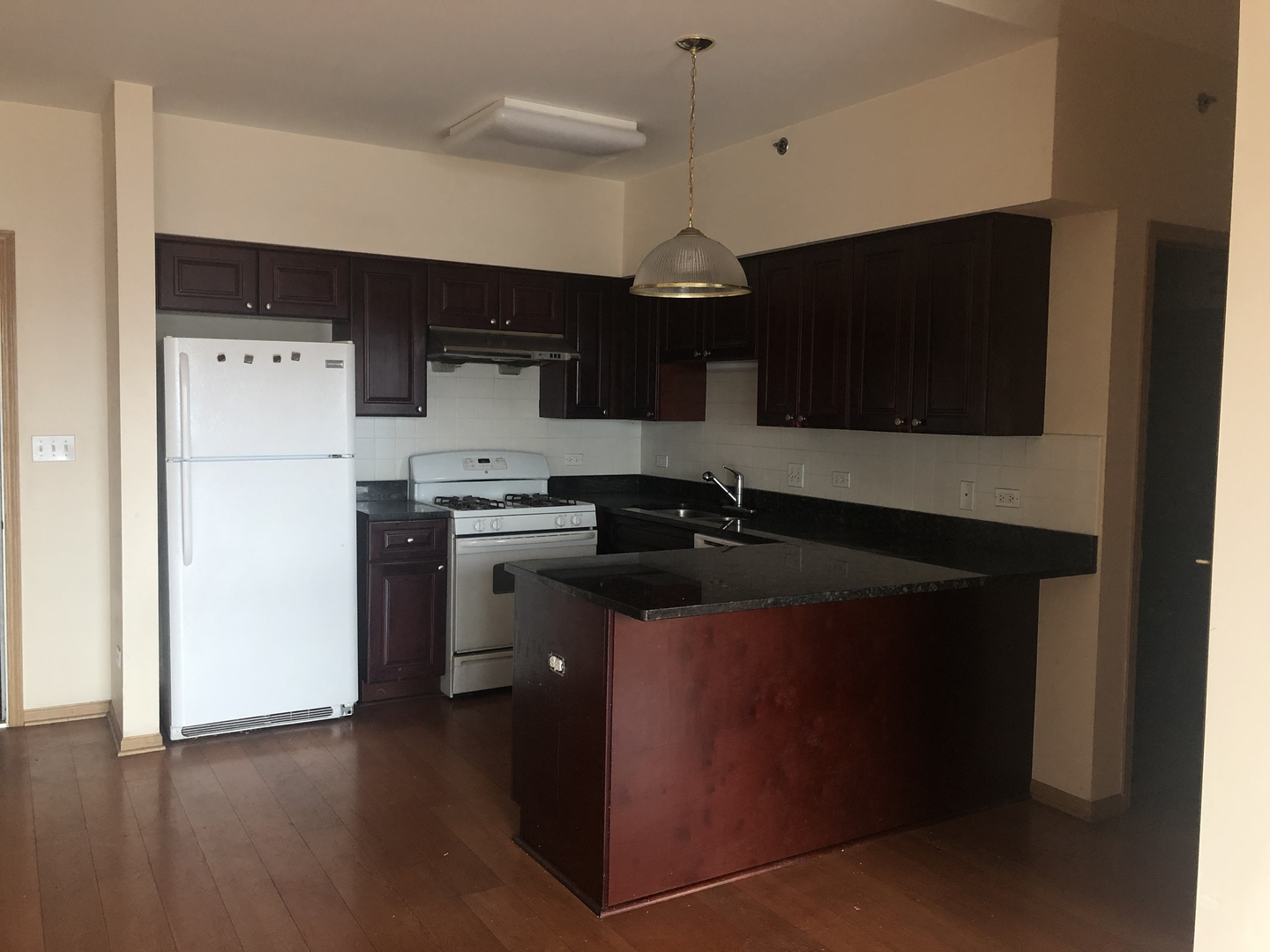 2322 South Canal 411, CHICAGO, Illinois, 60616