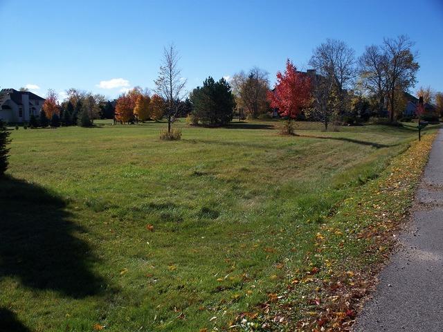 2311 Falcon Lane Spring Grove, IL 60081 - MLS #: 08483747