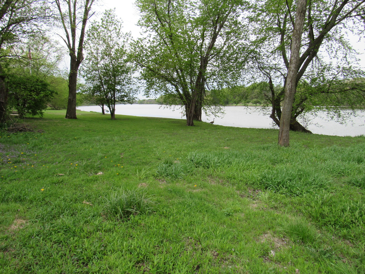 Property for sale at Lot 1 Widows Road, Wilmington,  IL 60481