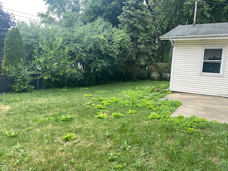 412 Thunderbird, Carol Stream, Illinois, 60188