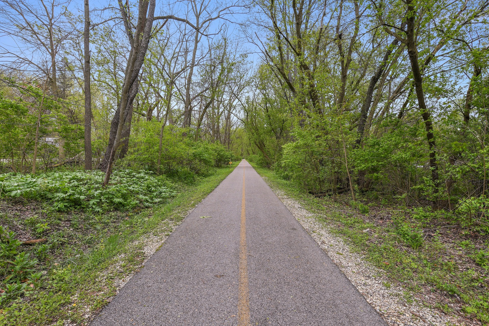 1105 Riverwood, Algonquin, Illinois, 60102