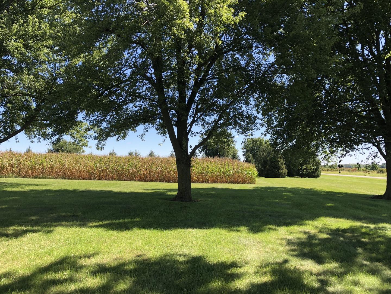 22551 Parnell, FARMER CITY, Illinois, 61842