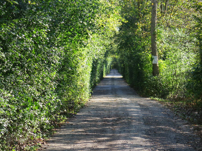 1725 Trillium Lane, Riverwoods, IL 60015