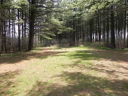 Lot 1 Pine Street, Burlington, WI 53105