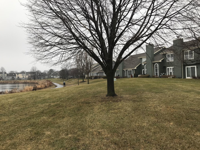 1288 Lake Shore, Carol Stream, Illinois, 60188