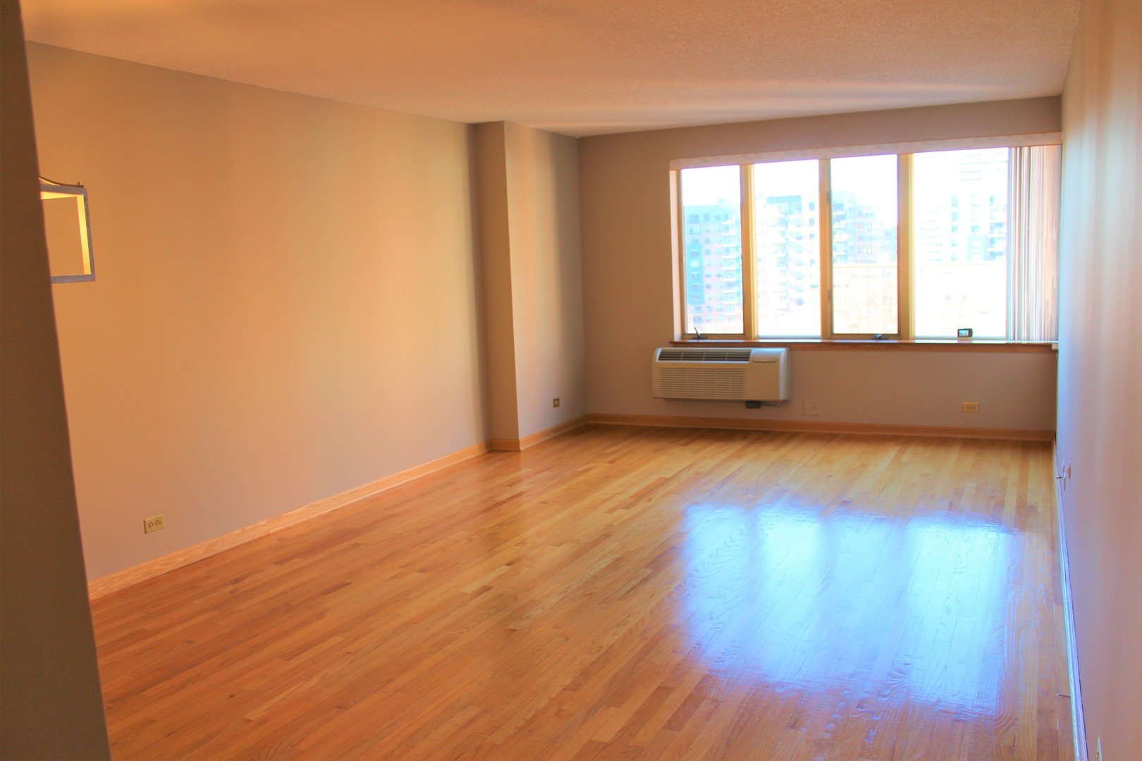 801 South Plymouth 806, CHICAGO, Illinois, 60605