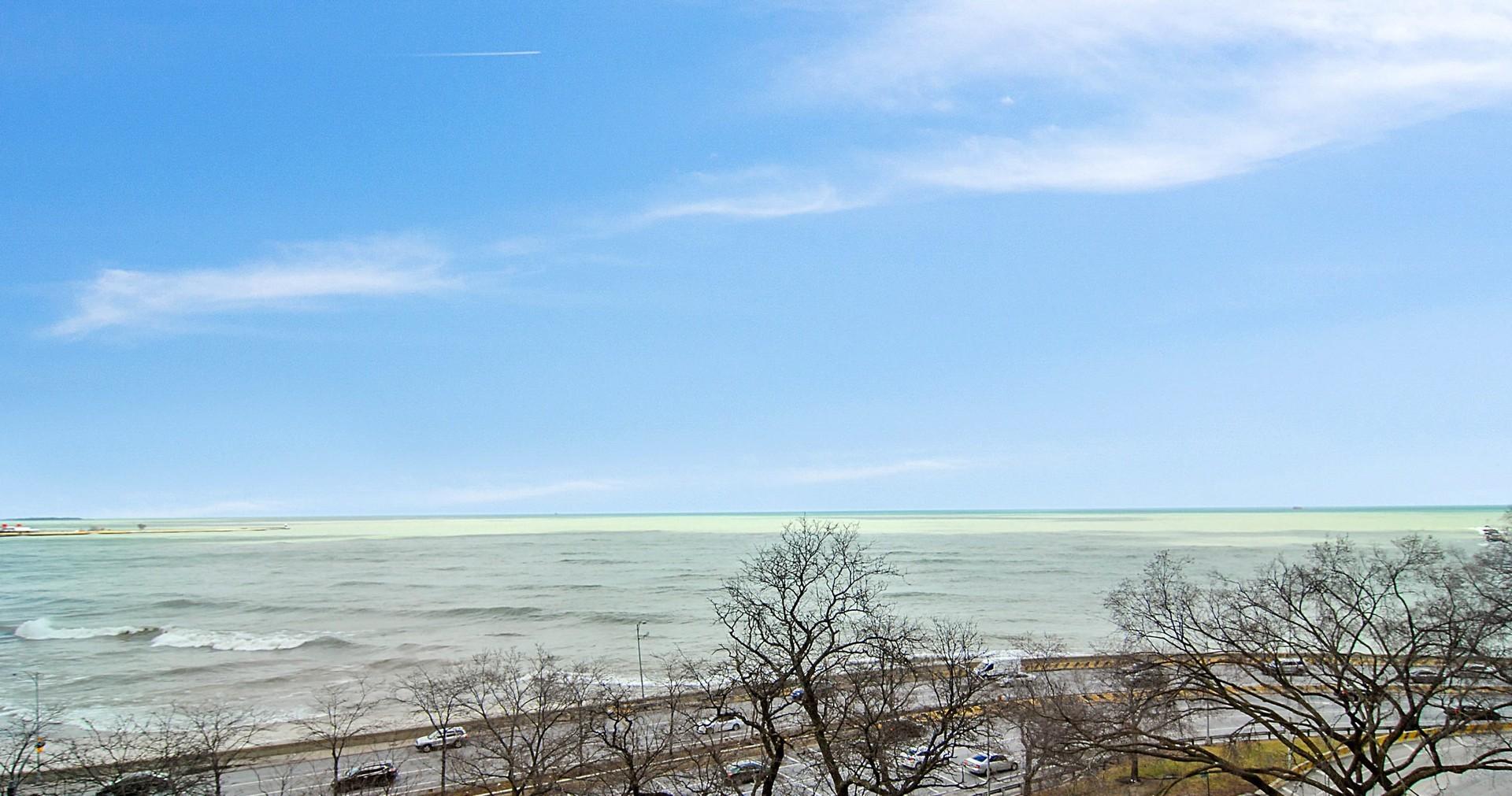 219 East LAKE SHORE 7CD, CHICAGO, Illinois, 60611