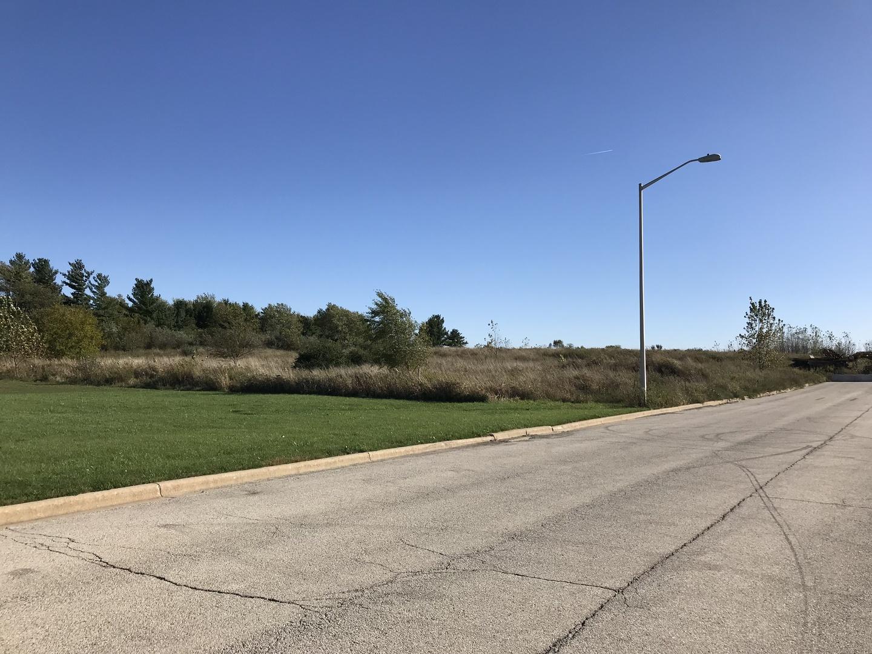 22903 CITATION Road, Frankfort, IL 60423