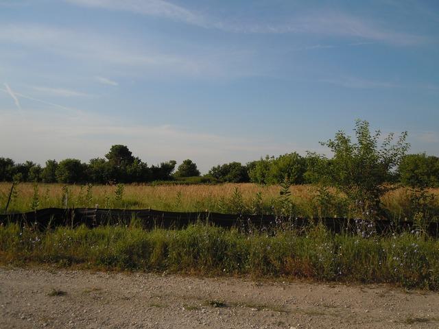 1945 Wiesbrook Drive, Oswego, IL 60543