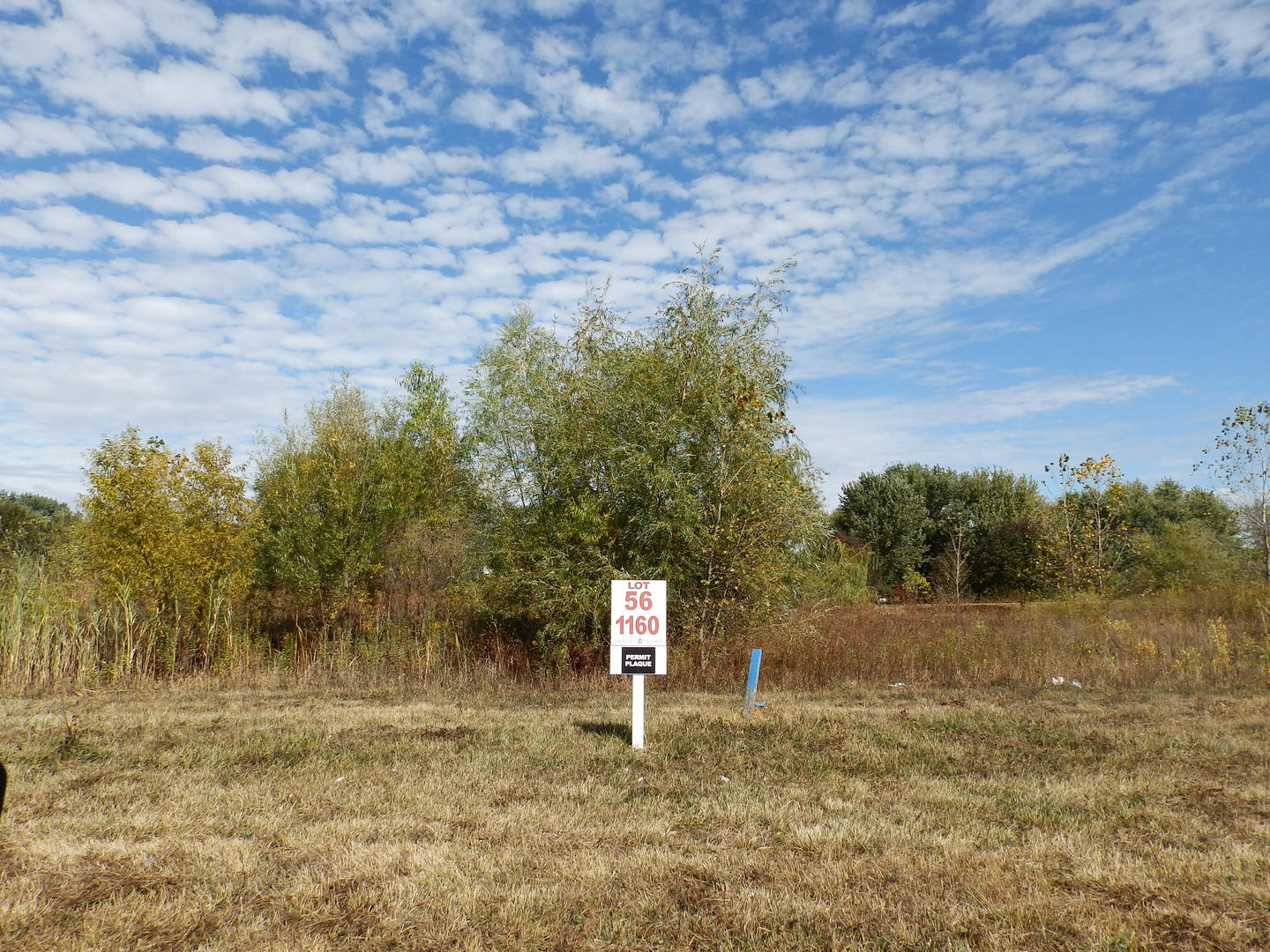 Lot 56 Hilldale, ST. CHARLES, Illinois, 60175