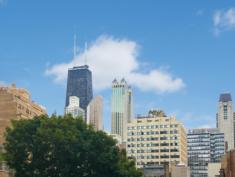 21 Goethe Unit Unit 3 ,Chicago, Illinois 60610